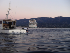 cruise ship monitoring