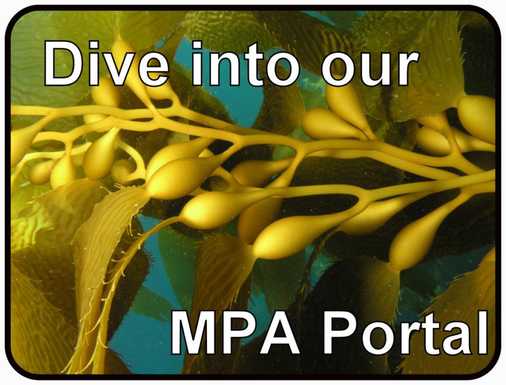 MPA Portal
