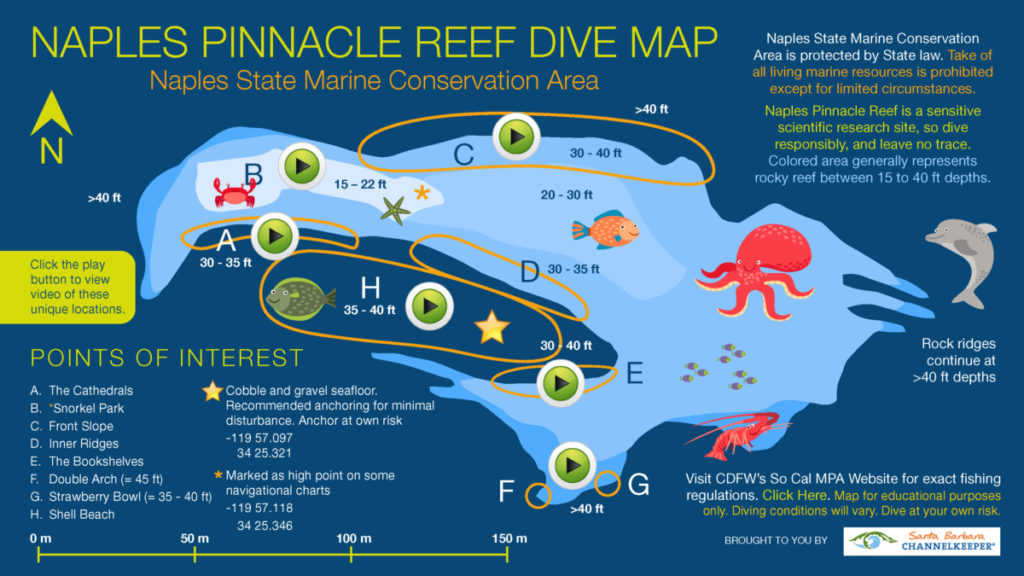 Click to open an interactive PDF and take an underwater dive tour!