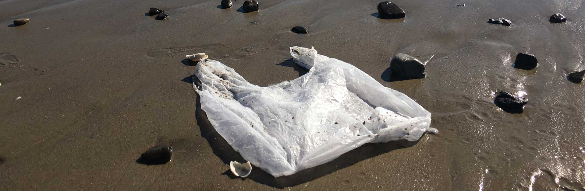 A plastic bag polluting the beaches in Santa Barbara.